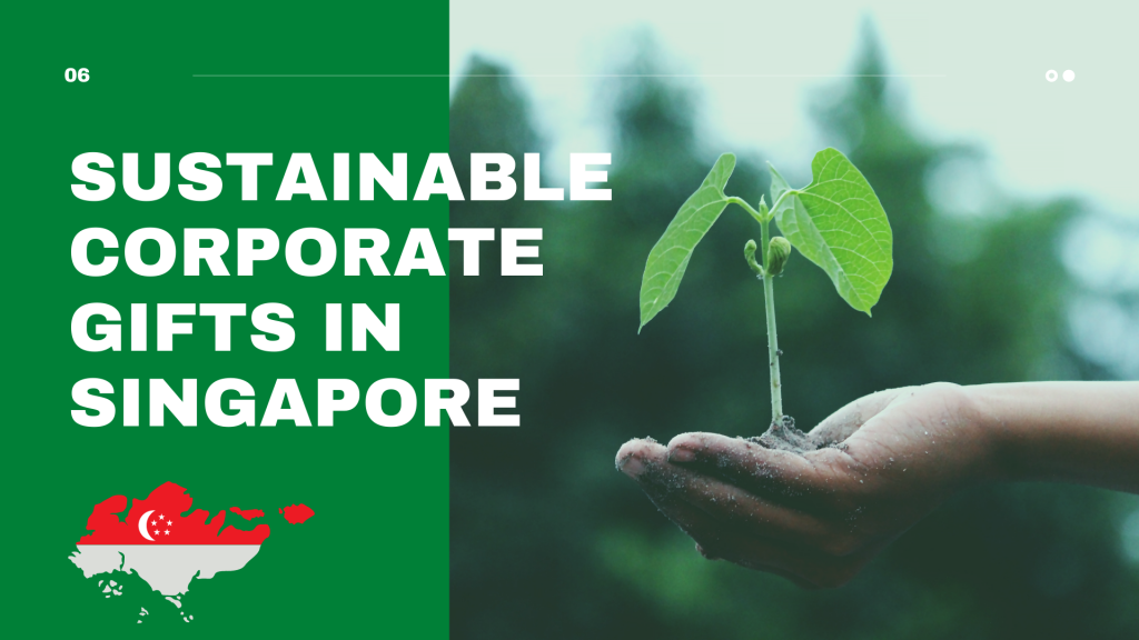Sustainable Corporate gifts in Singapore